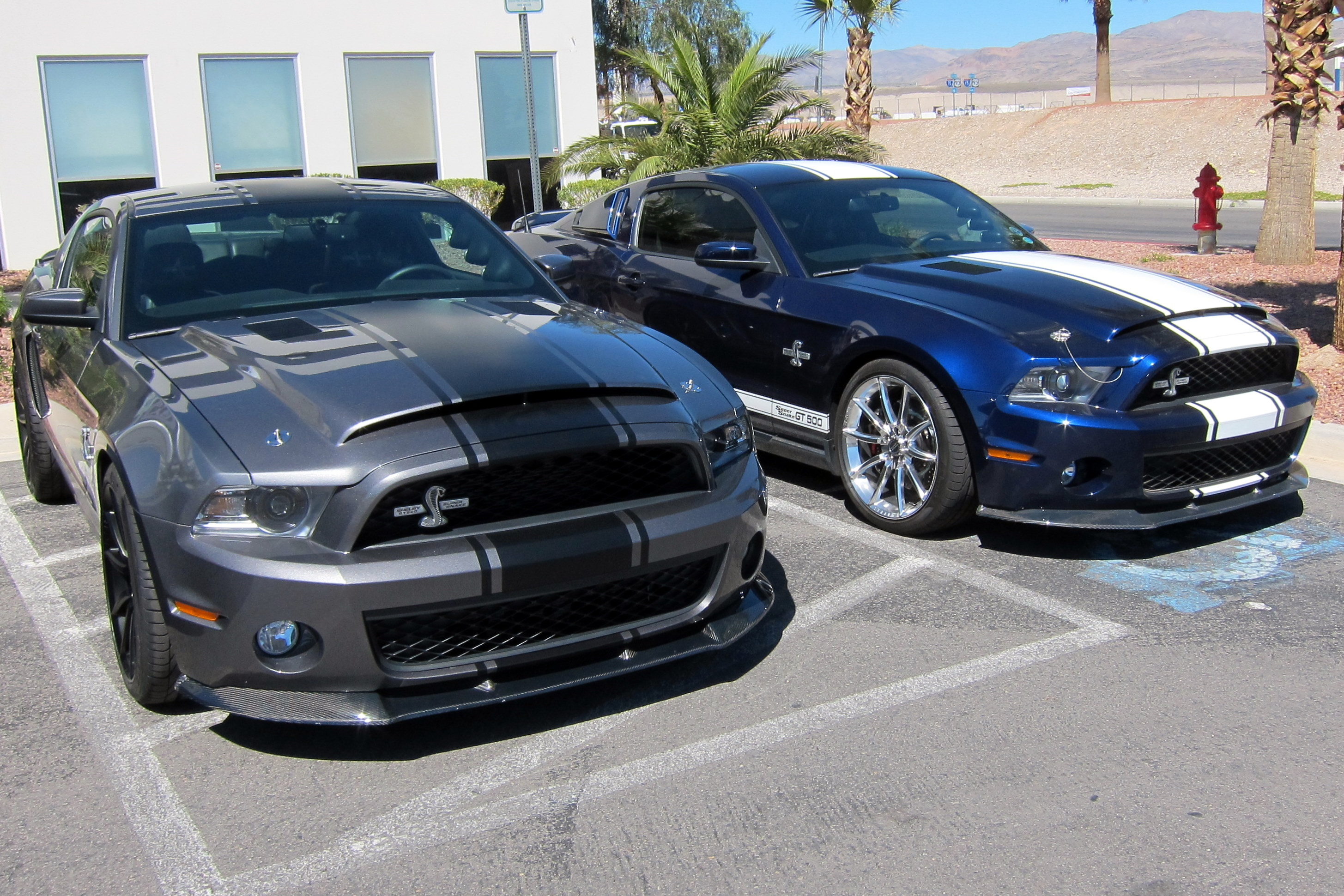 2012 ford mustang shelby gt500 super snake for sale. Black Bedroom Furniture Sets. Home Design Ideas
