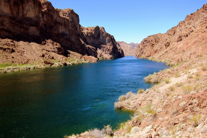 Colorado River Pix #14