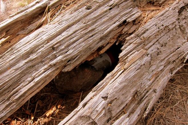 Fort Tuthill Pix #9