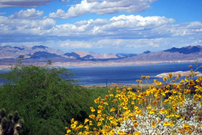 Lake Mead NRA, Pix #7