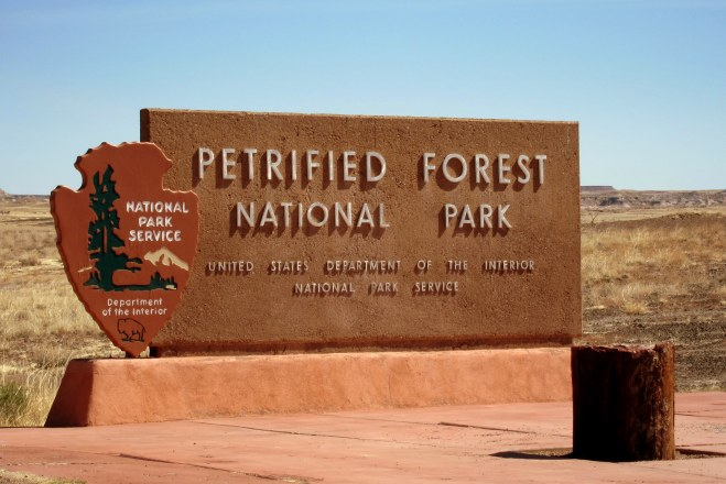 Petrified Forest National Park Photo #1