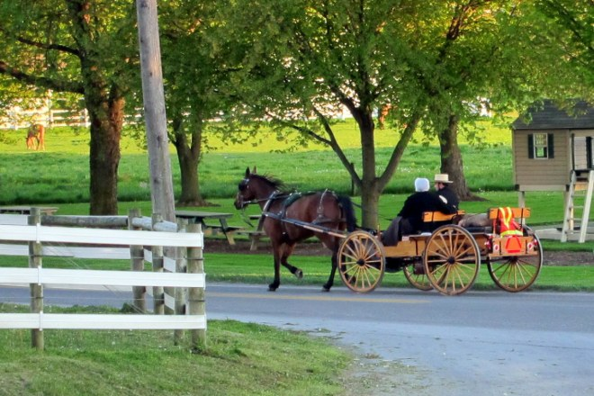 Amish Country #4