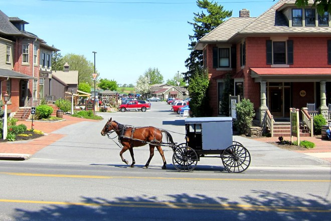Amish Country #7