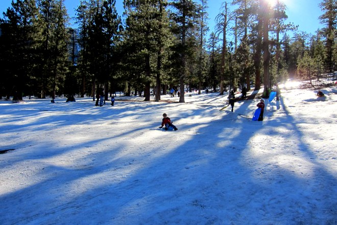 Mount Charleston Trip Pix #11