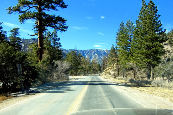 Mount Charleston Trip Pix #2