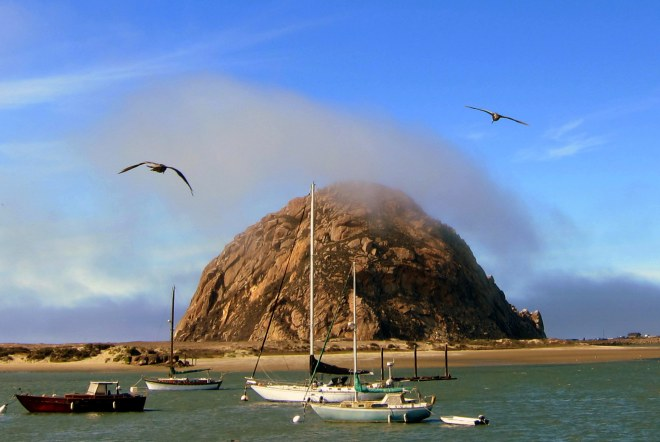 Moro Bay, Photo #8
