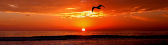 cropped-del-mar-beach-sunset-pix-3.jpg