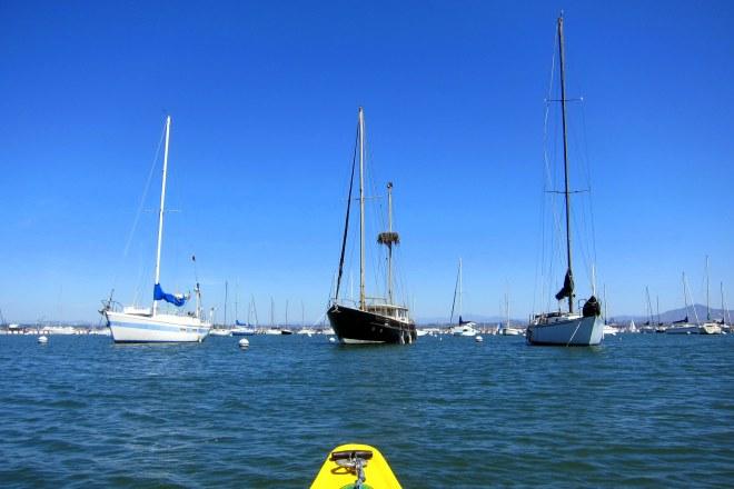 Kayak Paddle II, Pix #3