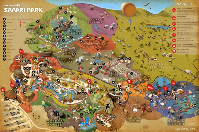 SD Zoo Safari Park Map
