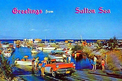 Salton Sea Postcard-1950's