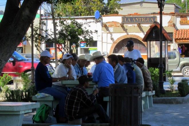 2016-03-02, Potrero #2, Photo #6