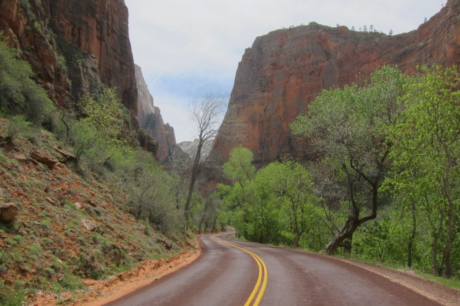 2016-04-08, Zion NP, Photo #11
