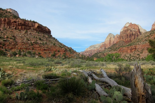 2016-04-08, Zion NP, Photo #7